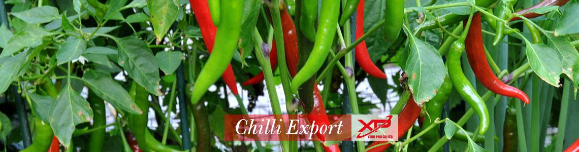 Xinh Phu export